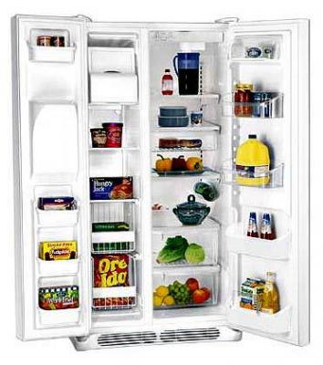 GE GSE20JEBF WW 20 CFT SIDE BY SIDE REFRIGERATOR For 220/240 Volts