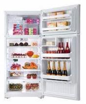 GE GTE17GBCWW 17 Cu. Ft. Top Mount Refrigerator 220 Volts