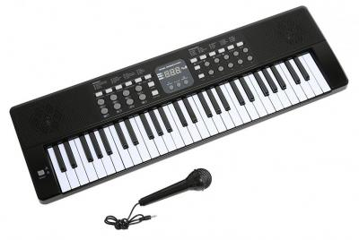 Axman T315853 Keyboard incl. microphone and power supply connection 220 NOT FOR USA