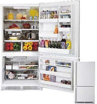 Amana 21 CFT BX521VCPWR Bottom Freezer Refrigerator for 220/240 Volts